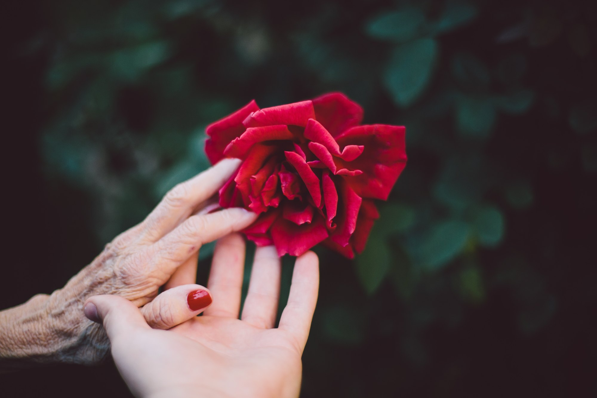 How I found my best friend in a 60 year old woman
