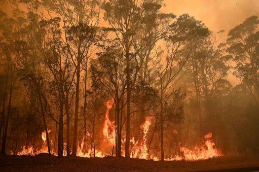 Bushfires in Australia